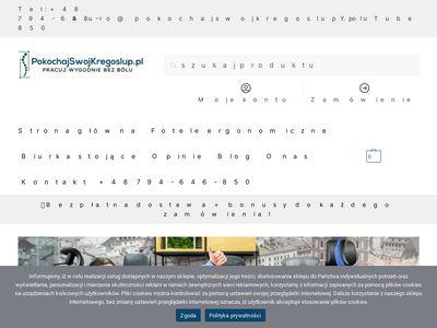 PokochajSwojKregoslup.pl - fotele ergonomiczne