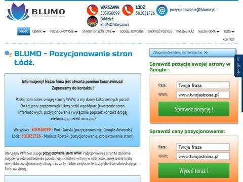 Blumo.pl firma zajmująca się pozycjonowaniem