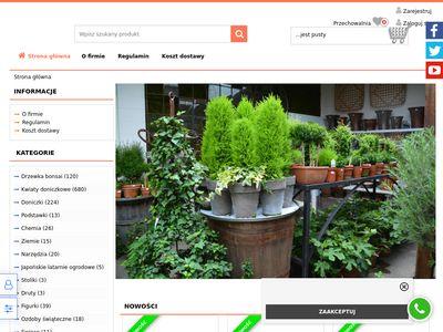 Bonsai.sklep24.org drzewko, kwiaty doniczkowe