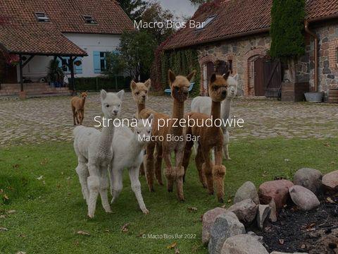 Macrobiosbar.pl - menu bez glutenu
